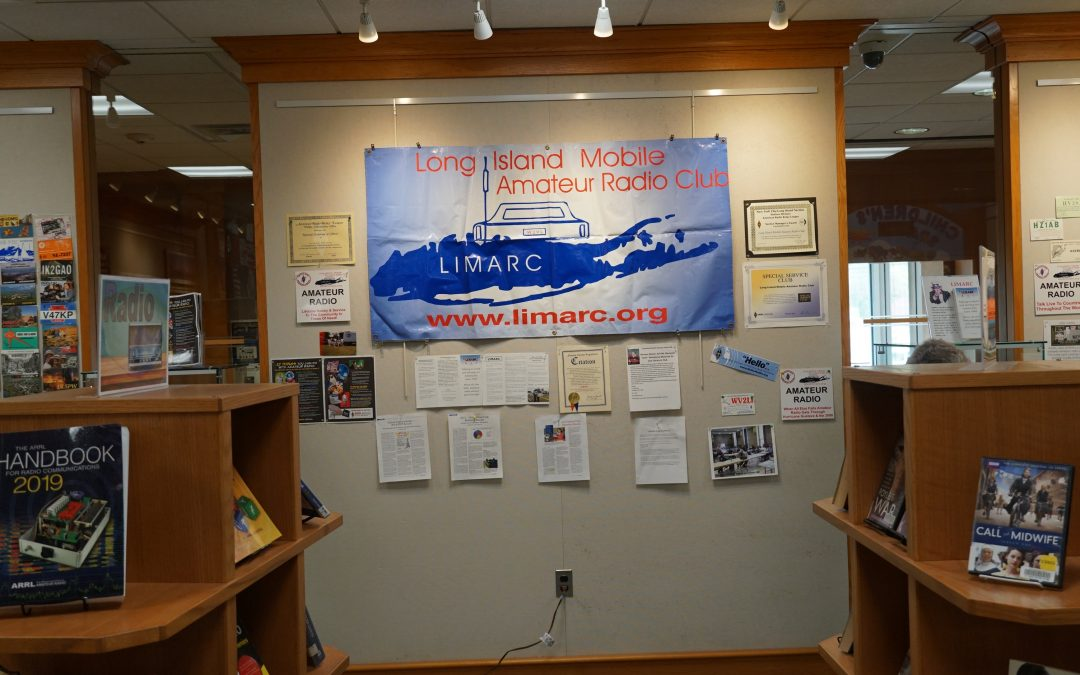 Levittown Library Display and Mini Field Day